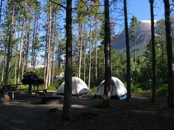 many glacier campground